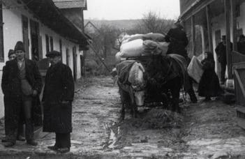 Család és kitelepítés a II. világháború utáni Közép-Kelet-Európában